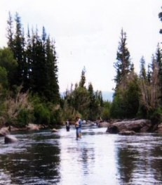 fly fishing the Blue River.