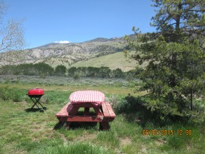 Cabin A picnic table and grill with view of Williams Range